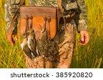 gourmet game 3. hunting ... | Shutterstock . vector #385920820