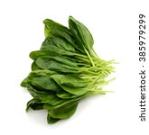 freshly green spinach isolated... | Shutterstock . vector #385979299