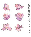 Six Stylized Vector Magnolia...
