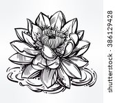 hand drawn lotus flower. lily... | Shutterstock .eps vector #386129428