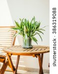 vase plant on table around... | Shutterstock . vector #386319088