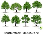 beautifull tree on a white... | Shutterstock .eps vector #386350570