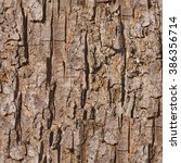 Old Maple Tree Bark Seamless...