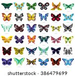 Thirty Six Colorful Butterflies