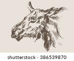 moose vector  hand draw sketch  | Shutterstock .eps vector #386539870