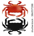 Red And Black  Crab On White...