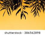 silhouette of leaves over... | Shutterstock . vector #386562898