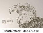 american white headed eagle | Shutterstock .eps vector #386578540