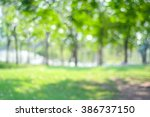 blur park with bokeh light... | Shutterstock . vector #386737150