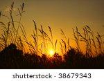 autumn sunset | Shutterstock . vector #38679343