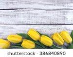 Row Of Yellow Tulips On White...
