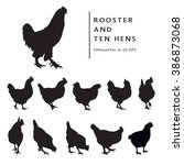 Hen And Rooster. Black And...