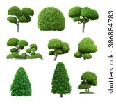 Tree Collection Set Isolated White - Fine Art prints