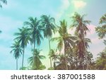 coconut tree at tropical coast... | Shutterstock . vector #387001588