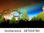 Wild Forest Panoramic Landscap...