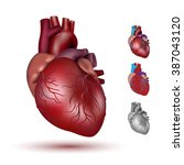 human heart illustration | Shutterstock .eps vector #387043120