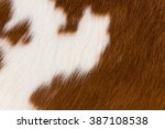 close up brown and white... | Shutterstock . vector #387108538
