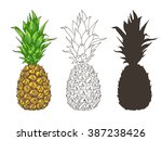 vector pineapple illustrations... | Shutterstock .eps vector #387238426
