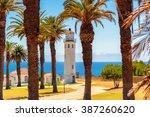 palm trees on california coast  ... | Shutterstock . vector #387260620