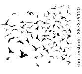 seagulls black silhouette on... | Shutterstock .eps vector #387379150