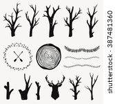 Vector Graphic Set With Forest...