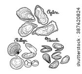 graphic vector mussels  oysters ...