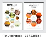 Business brochure design template. Vector flyer layout, blur background with elements for magazine, cover, poster design. A4 size. | Shutterstock vector #387625864