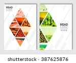 business brochure design... | Shutterstock .eps vector #387625876
