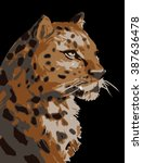 vector illustration of wild cat ... | Shutterstock .eps vector #387636478
