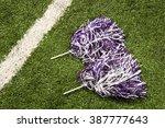 cheerleading pom poms | Shutterstock . vector #387777643