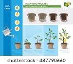 vector timeline infographic...   Shutterstock .eps vector #387790660