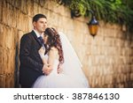 bride and groom at wedding day... | Shutterstock . vector #387846130