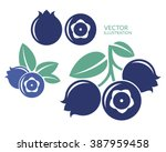 blueberry. icon set. abstract... | Shutterstock .eps vector #387959458