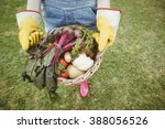 Woman Holding A Basket Of...