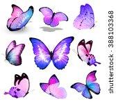 Nine Violet Blue Pink...