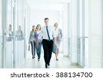 businesspeople walking in the... | Shutterstock . vector #388134700