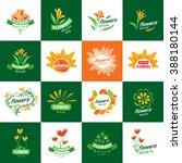 flower vector logo | Shutterstock .eps vector #388180144