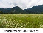 socha valley in the summer | Shutterstock . vector #388209529