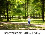 toddler boy walking in the park ... | Shutterstock . vector #388247389