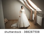 luxury bride in white dress... | Shutterstock . vector #388287508