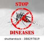 tiger mosquito  aedes... | Shutterstock . vector #388297819
