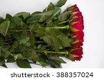 red roses | Shutterstock . vector #388357024