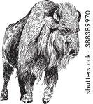 illustrated american bison   Shutterstock .eps vector #388389970