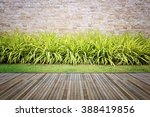 wooden decking and plant with... | Shutterstock . vector #388419856