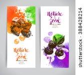 eco food banners set.... | Shutterstock .eps vector #388428214