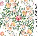 beautiful roses. flowers... | Shutterstock . vector #388492498