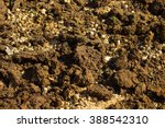 Abstract Cow Dung