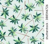tropical australian foxtail... | Shutterstock . vector #388546726