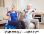 senior couple lifting dumbbells ... | Shutterstock . vector #388565494