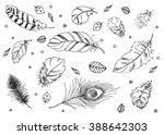 hand drawn vector doodle... | Shutterstock .eps vector #388642303